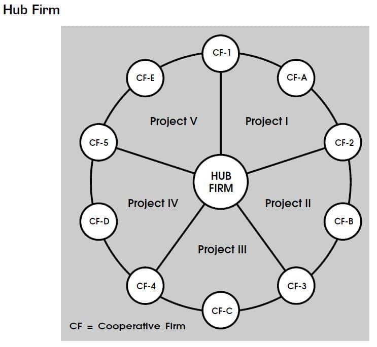 hub firm diagram